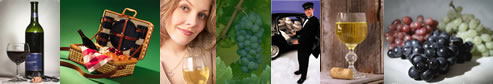 Long Island Wine Tours - Long Island Winery Tours - specializing in limousine services for wine tasting in the Long Island, New York area.  Tours featuring professional chauffeurs, luxury sedans, stretch limousines, vans, more.